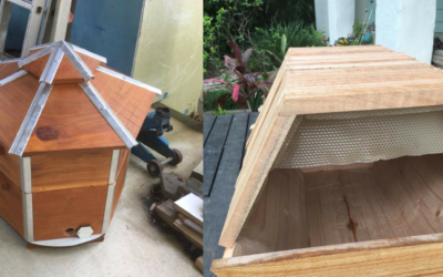 Mullumbimbees | Hives are almost ready